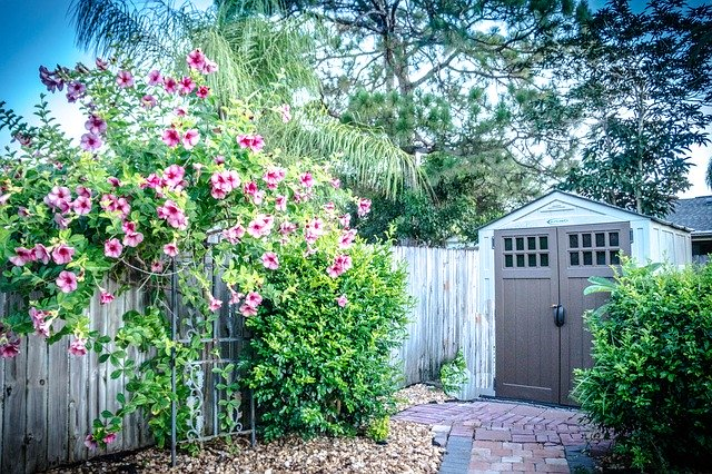 Shed-buying tips for homeowners
