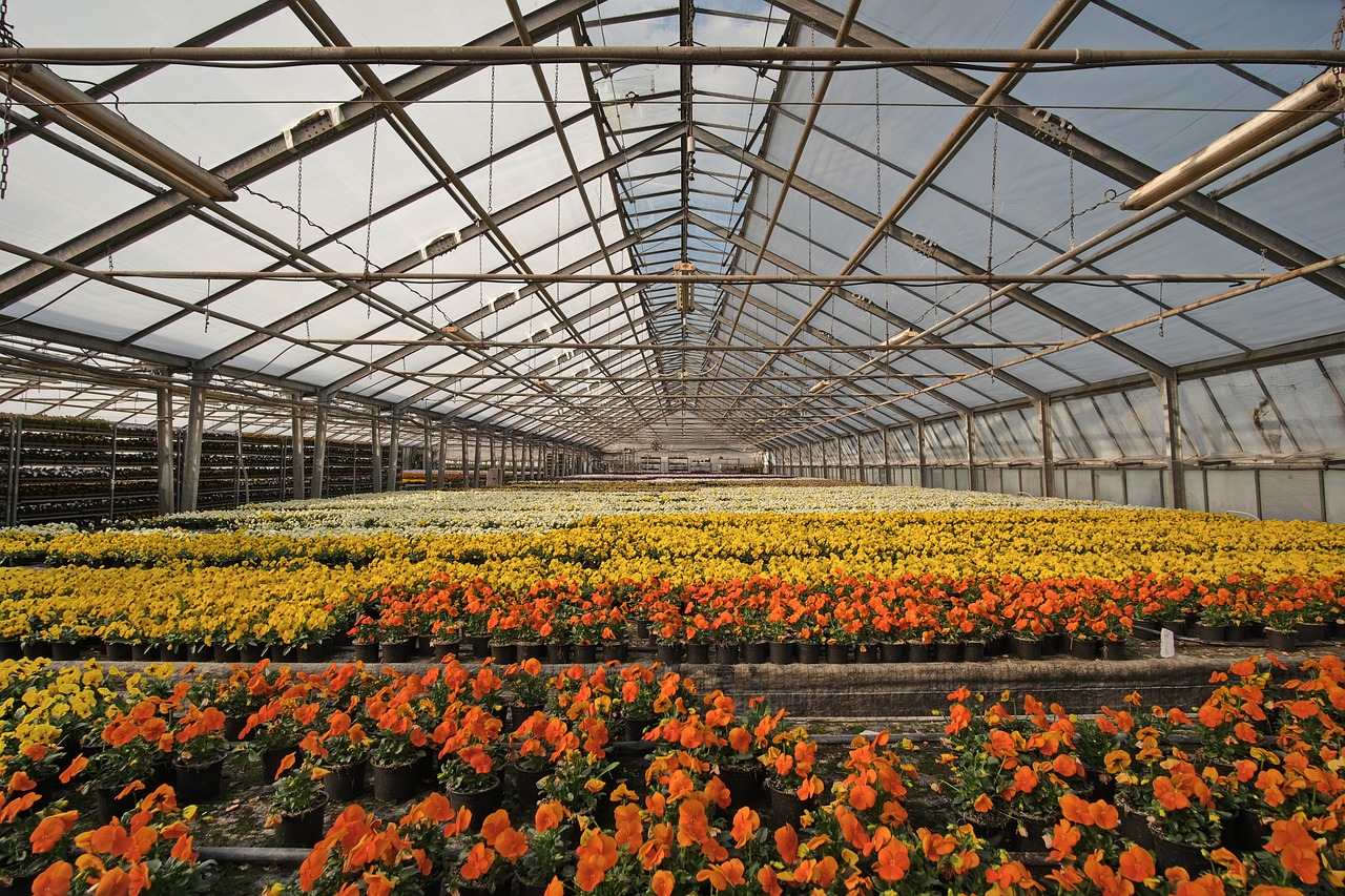 4 reasons for moving your horticulture business from Kansas to Arizona